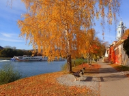 Wachau, Herbst, Dürnstein, Donau, Schifffahrt