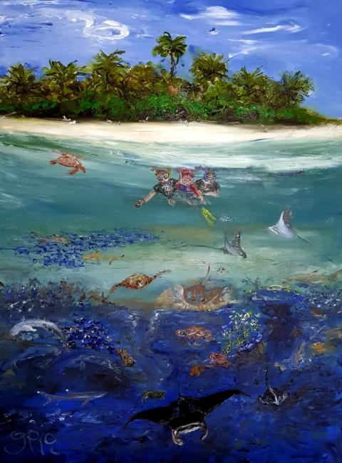 Maldives, Paradise, Snorkeling, Mantas