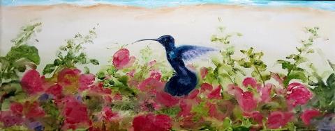 Karibik, Kolibris, Paradies, Palmen, Sandstrand